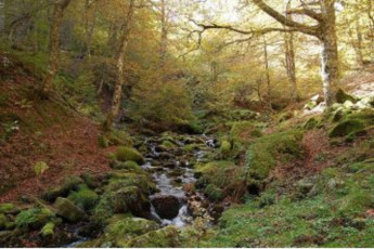 Aisa - Albergue Valle de Aisa :