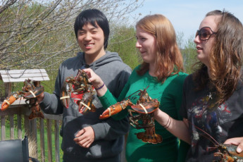 HI - Cape Breton : Hostel guests holding lobsters