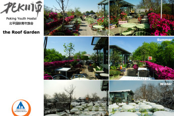 Beijing - Peking Youth Hostel : Collage of Peking Youth Hostel's roof garden in winter, summer and spring