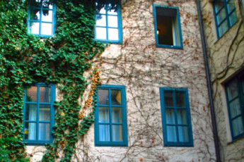 Vienna - Myrthengasse : Side of the hostel building exterior