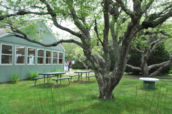 HI - Eastham : Garden and picnic benches at HI Eastham Mid Cape