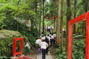Xitou Youth Activity Centre : Xitou Youth Activity Centre outside wooden area, with a group of guests going hiking