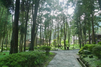 Xitou Youth Activity Centre : Xitou Youth Activity Centre outside wooden area, with a pathway