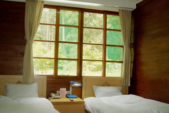 Xitou Youth Activity Centre : Xitou Youth Activity Centre hostel interior, twin room with wooden cabin style decor and a window overlooking the woods