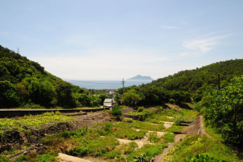 Yilan - Toucheng Farm International YH : Yilan - Toucheng Farm International YH hostel surrounding outdoor area, very green, full of nature and mountains, sea visible in the distance