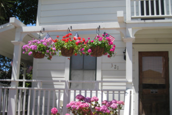 HI - Santa Cruz : Flowers on the gallery at HI Santa Cruz