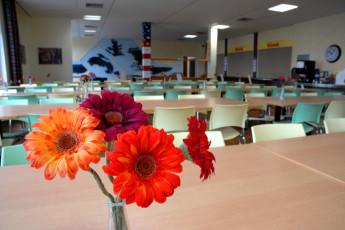 Borkum : Borkum Hostel Dining Area