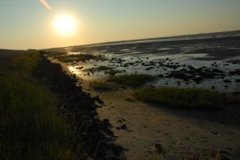 Borkum : Borkum Hostel beach