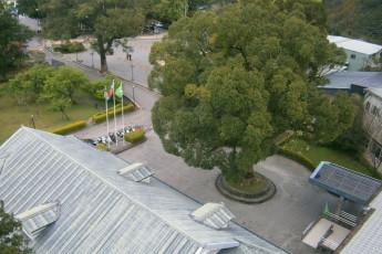 Fuhsing Youth Activity Center - Taoyuan : Birds eye view of Fuhsing Youth Activity Center entrance in Taiwan