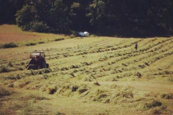 Stockholm-Gällnö : Stockholm Gallno tractor farming