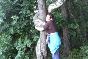 Björkfors : Bjorkfors hostel in sweden tree hugging