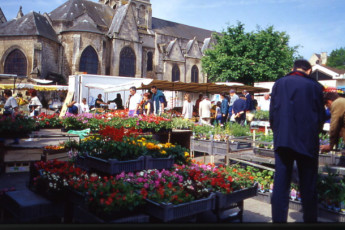 Auberge de jeunesse Hi Poitiers : Flower Market and Tourist Office in Poitiers Hostel, France