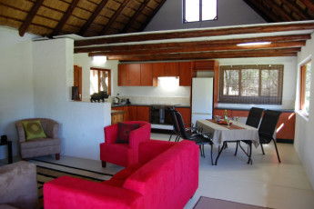 Bush Pub & Inn : Interior communal lounge at the Hoedspruit - Tom Cats Safari Inn hostel in South Arica