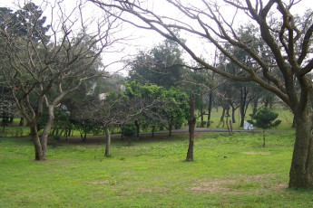 Jinshan Youth Activity Center : Park at the back of Jinshan Youth Activity Center Hostel, Taiwan