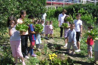 Cáceres - Albergue Juvenil Alberjerte : School Garden Local to Caceres - Albergue Juvenil Alberjerte Hostel, Spain