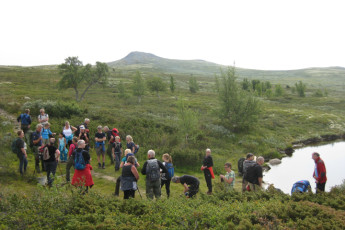 Høvringen : People Exploring the Landscape Surrounding Hovringen Hostel, Norway