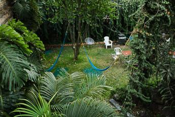 Guadalajara - Hostel Hospedarte Chapultepec : Garden in Guadalajara - Hostel Hospedarte Chapultepec, Mexico