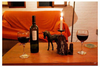 Colonia - Horse Farm El Galope : Relaxing with a Glass of Wine in Colonia - Horse Farm El Galope, UIruguay