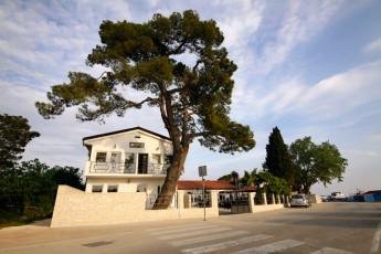 Zadar : Zadar hostel in Croatia exterior
