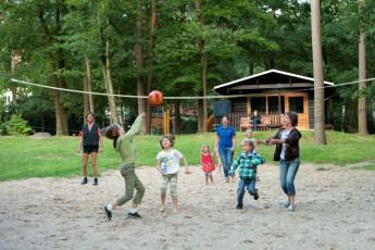Bad Fallingbostel : mal Fallingbostel hostal en Alemania voleibol