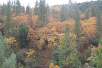 HI – Midpines - Yosemite Bug Rustic Mountain Resort : rústico Yosemite Mountain Resort hostal residencia en los Estados Unidos dos
