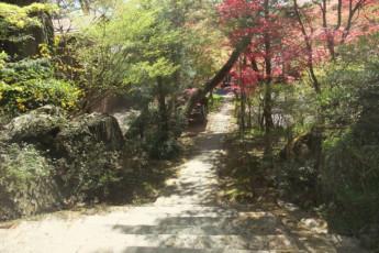 Takayama - Hida-Takayama-Tensho YH : Hida-Takayama-Tensho Youth Hostel Steps