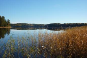 Brunskog : Brunskog lake