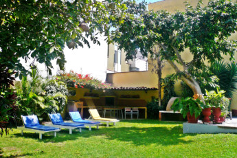 Lima - Hostelling International Lima : Gardens of the Lima - Hostelling International hostel in Lima Peru