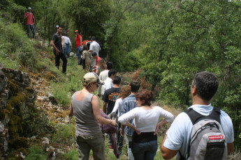 Ramlieh Youth Hostel : Trekking Through the Landscape Surrounding Ramlieh Youth Hostel, Lebanon