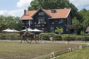 Stayokay Gorssel : Horse Riding at Stayokay Gorssel Hostel, Netherlands