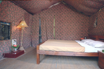 Corbett Park : Double Bedroom in Corbett Park Hostel, India
