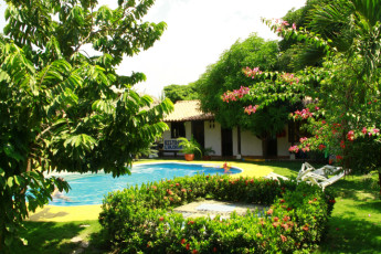Santa Marta - The Dreamer Hostel : Swimming pool at the Santa Marta - The Dreamer Hostel in Columbia