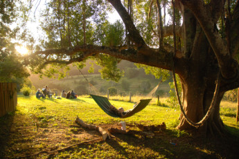 Nimbin Rox YHA : Guests relaxing in garden at the Nimbin Rox YHA hostel in Australia