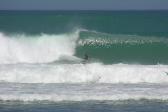 Lancelin Lodge YHA : Lancelin Lodge YHA man windsurfing at sea