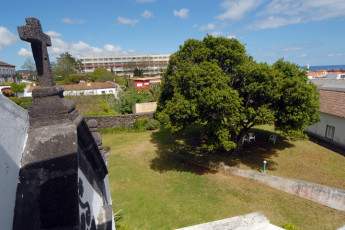 Azores - S.Miguel Is. - Ponta Delgada : View of Garden and Local Area from Azores - S.Miguel Is. - Ponta Delgada Hostel, Portugal