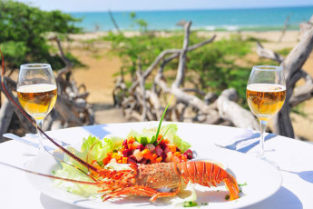 Tumbes - HI Grillo Tres Puntas. : Lobster meal at the Tumbes - HI Grillo Three tips in Peru