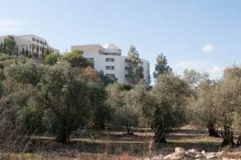 Peki'in : Exterior of the Pekiin hostel in Israel