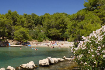 Stari Grad (island of Hvar) - Sunce : Beach Local to Stari Grad (island of Hvar) - Sunce Hostel, Croatio