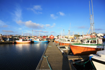 Lista : Local Marina at Lista Hostel, Norway