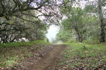 HI - San Luis Obispo : Woods Local to San Luis Obispo Hostel, USA