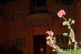Rimel : Nature Outside at Night, Rimel Hostel, Tunisia