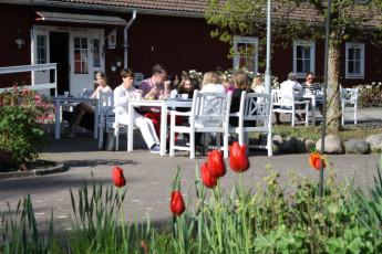 Stora Frögården : Guests Dining on the Patio at Stora Frogarden Hostel, Sweden