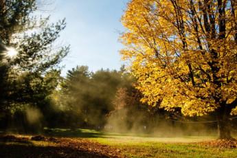 HI - Littleton - Friendly Crossways : Garden During the Fall at Littleton - Friendly Crossways Hostel, USA