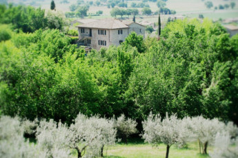 Assisi - Ostello della Pace : Location of Assisi - Ostello della Pace Hostel, Italy in Surrounding Landscape