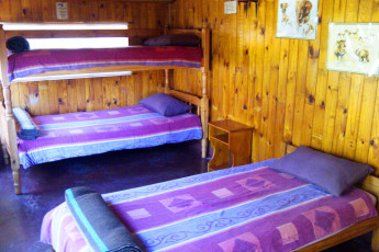 Isinkwe - Safari Bushcamp : Dorm Room in Isinkwe - Safari Bushcamp Hostel, South Africa