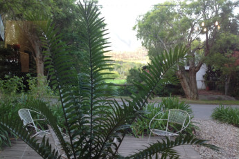 Swellendam - Backpackers Adventure Lodge : Gardens at the Swellendam Backpackers Adventure Lodge hostel in South Africa