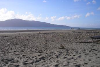 YHA Paraparaumu : Beach Local to Paraparaumu Youth Hostel Association, New Zealand