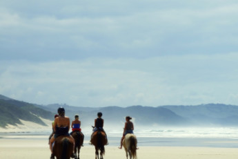 Buccaneers Lodge & Backpackers - Chintsa : Guest horse rides at the Buccaneers Lodge and Backpackers Hostel in South Africa