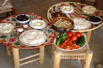 Tanaïl -Ecolodge Tanaïl : Food in Tanail -Ecolodge Tanail Hostel, Lebanon