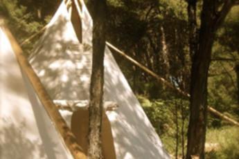 YHA Raglan : Exterior View of Tents at Raglan YHA - Solscape Eco Retreat Hostel, New Zealand